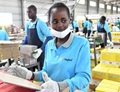 Chinese firm offer new lease of life to Kenyan youth